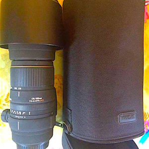 SIGMA LENTS FOR CANON