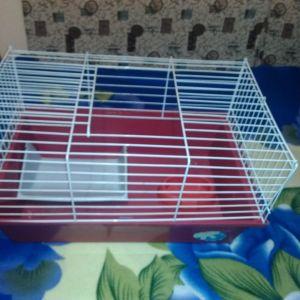 κλουβι για κουνελακι