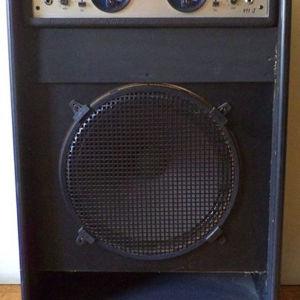 Ενισχυτής μπάσσου/κιθάρας (με καμπίνα) LEM 911S – συλλεκτικός